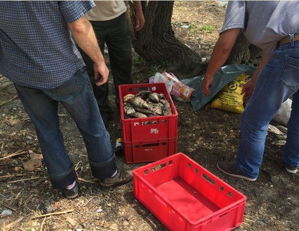 ИАРА предлага: Труд в полза на обществото при незаконен риболов