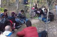 Европа въвежда квалификационен паспорт за бежанците