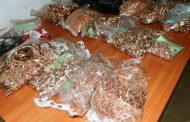 1557 грама бижута от благородни метали иззеха митнически служители