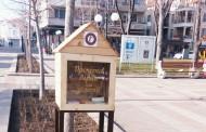 В Поморие бяха поставени първите къщички за книги. Провокират отношение към четенето
