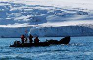 Отбелязваме 25-та българска антарктическа експедиция с фотоизложба и документален филм в неделя