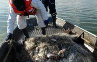 300 кг. риба задържаха при полицейска операция на езерото