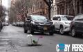 Из многобройните дупки на Ню Йорк: Цветенца (ВИДЕО)