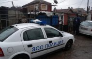 Съсед разби къщата на бургазлия, уби кучето му и заспа в леглото му