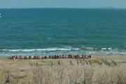 """Бургазлии изписаха на пясъка  """"Спаси Пирин и морето"""" /видео/"""