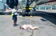 Българска стюардеса почина след падане от самолет (СНИМКА)