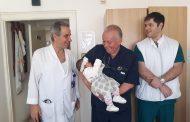 Бургаски лекари спасиха живота на 4-месечно бебе със сложна операция