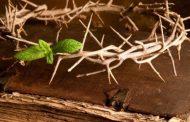 Разпети петък: християните отбелязват кръстната смърт на Христос