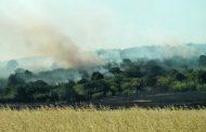 """Затвориха магистрала """"Тракия"""" от Карнобат до Бургас заради пожар в житна нива /видео/"""