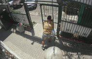 Ако разпознаете този крадец, обадете се в полицията