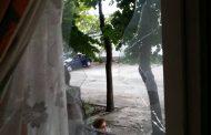 Атакуваха с камъни жилището на бургаски фоторепортер /СНИМКИ/