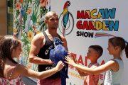 Изложба на папагали от три континента отваря врати в Бургас