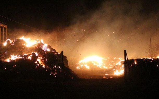 Пожар изпепели десетки декари край ТЕЦ Сливен. Стихията е овладяна (СНИМКИ/ВИДЕО)