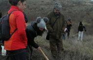 Ученици засадиха близо 300 фиданки в лесопарка на Айтос