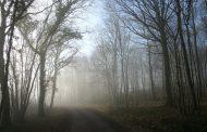 Издирват двама мъже, изчезнали край Козичино