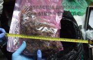 Разбита е наркобанда в Бургас арестувани са 7 души
