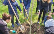 РИОСВ – Бургас отбеляза Международния ден на Земята