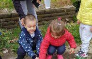 Деца садиха домати, танцуваха и пяха за Деня на биологичното разнообразие