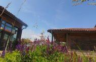 0стров Света Анастасия ви кани на празник на билките, народното творчество и здравословната храна