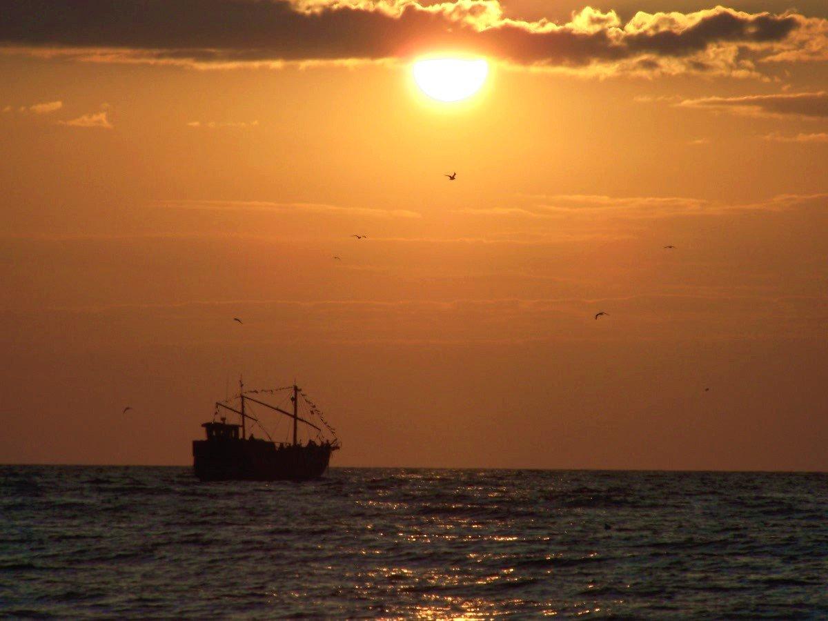 Откриха праисторически свят на дъното на Северно море