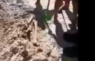 МВР: Откритите кости на плажа в Китен са от старо гробище/видео/