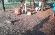 """Камери следят зоната за кучета в """"Меден рудник"""", по искане на стопаните"""