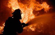 Пламна павилион в Маринка