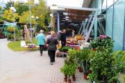 """""""ФЛОРА ЕСЕН"""" ви очаква с цветя, посадъчен материал, био и арт продукти"""