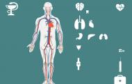 """Информирайте се за състоянието на черния си дроб с безплатните скринингови изследвания в лаборатория """"ЛИНА"""""""