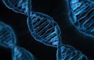 """Важно за пациентите: Лаборатория """"ЛИНА"""" въведе нов и по-кратък срок за резултатите от ДНК изследванията"""