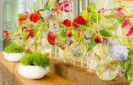 """""""Флора'2017"""" идва с хищни растения, бонсай, орхидеи, цветни скулптури"""