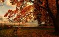 5-6 дни ще вали, в края на октомври – циганско лято