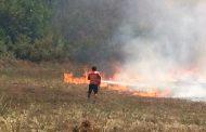 РИОСВ-Бургас: Няма превишения на нормите на въздуха в с. Изворище, с. Миролюбово и кв.Банево