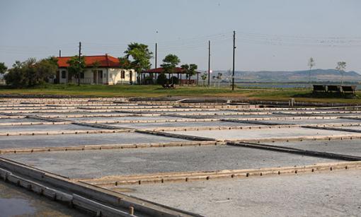 Спешно: Поморие подготвя проект за спасяване на Поморийското езеро