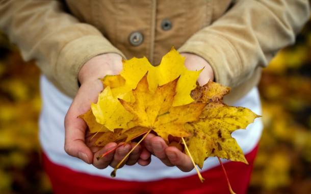 Слънчев и топъл уикенд, есента ни глези с високи температури