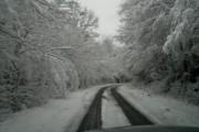 Сняг от четвъртък, температурите падат с 10 градуса