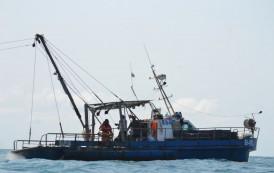 Двама рибари се удавиха до Емине