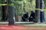 Откриха разчленен труп на малко дете в парк в Чикаго (ВИДЕО)
