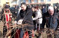 Вино, любов, песни и танци за празничния 14 февруари в Несебър