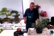 Всичко за изкуството бонсай във Флората