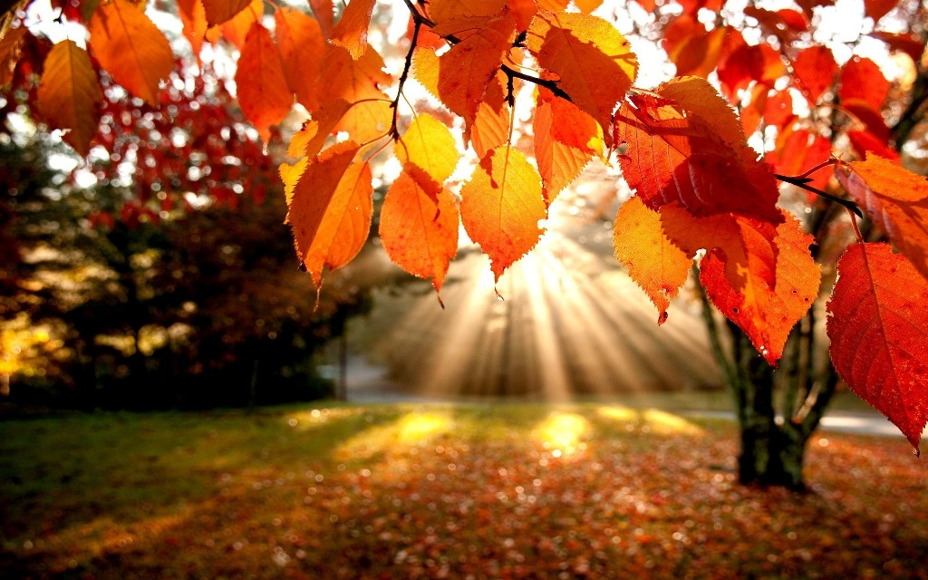 Септември започва със слънце и дъжд