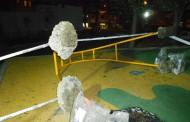 Потрошиха детската площадка в Борисовата градина