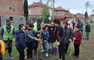 """Засадиха 40 млади върби в """"Долно Езерово"""""""