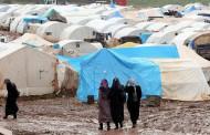 Турски журналист: Хиляди бежанци напират към границата с България