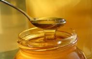 Лекции по пчеларство от 9 до 28 февруари в Бургас