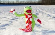 До минус 18 градуса може да паднат температурите през януари