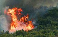 Страшен пожар между Миролюбово и Изворище, Бойко праща хеликоптер  /видео/