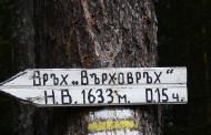 Търсят изгубена в Родопите бургазлийка